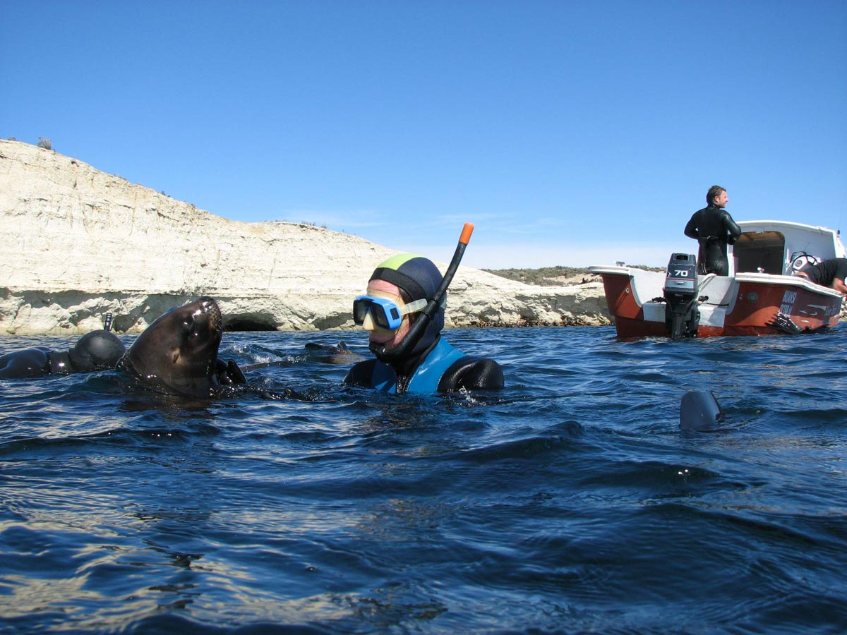 Snorkelling with Sea Lions Tour